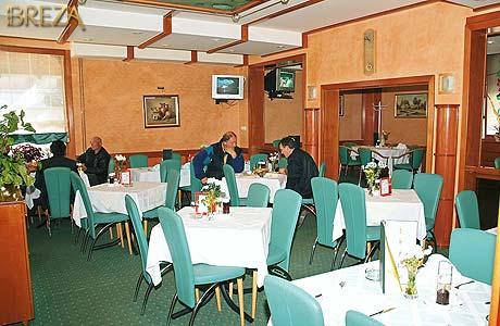 vrnjacka banja - breza restoran